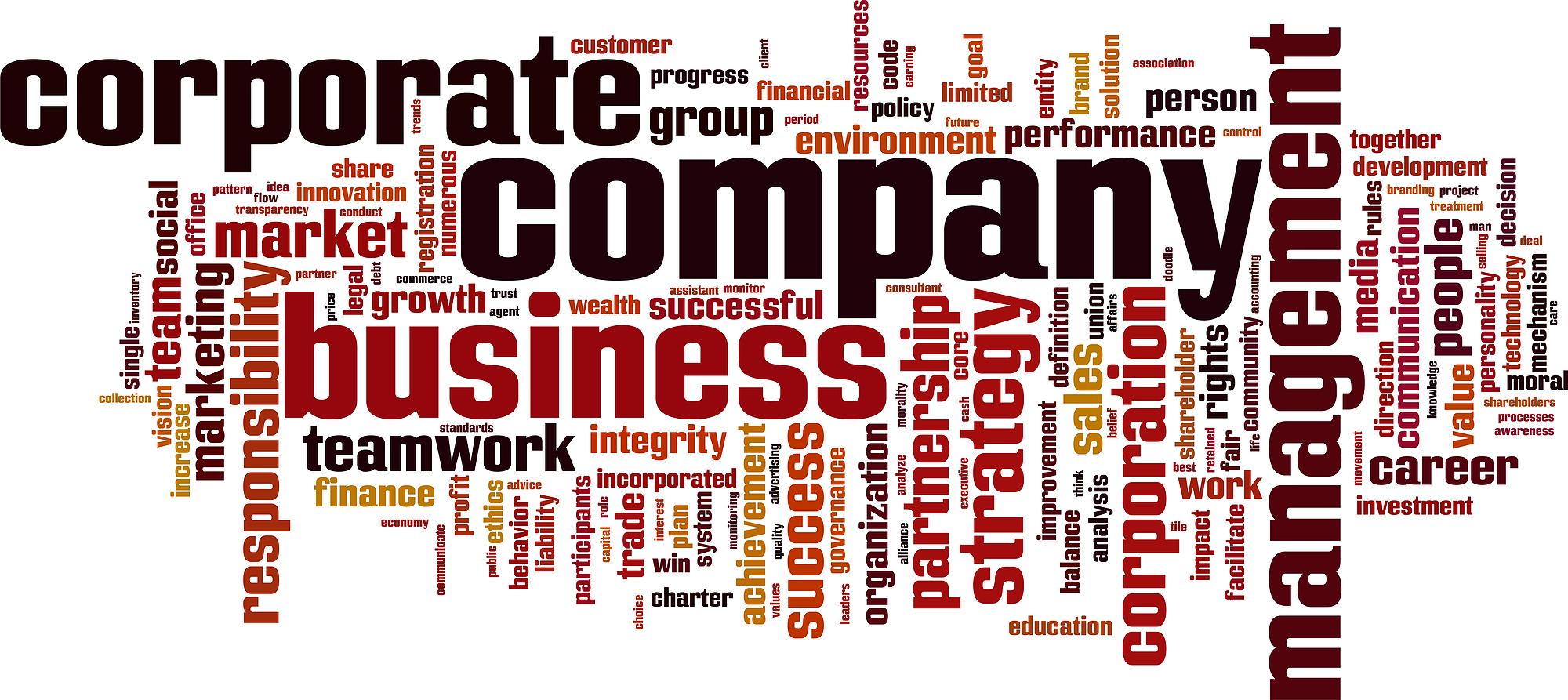 Company-Word-Cloud-entities-myrick-cpa-dc